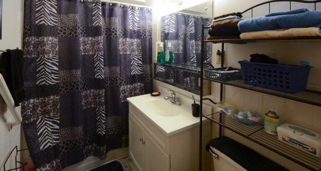 Minnehaha bathroom